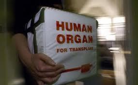 κουτί μεταφοράς ανθρώπινων οργάνων