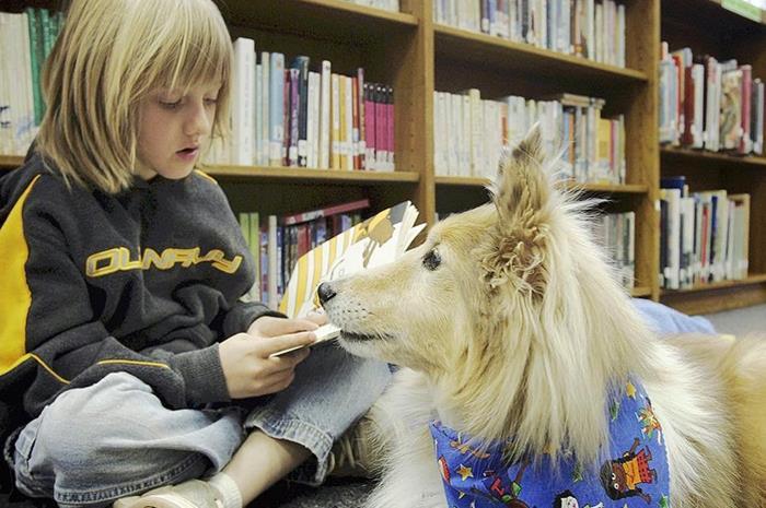 Παιδί που διαβάζει μπροστά σε βιβλιοθήκη και σκύλος δίπλα του