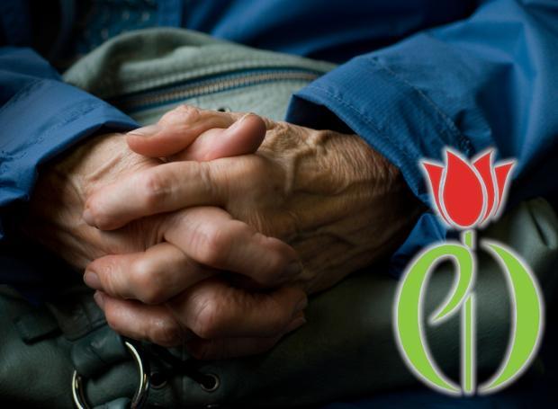 Χέρια ηλικιωμένου ανθρώπου και κόκκινη τουλίπα σύμβολο της νόσου παρκινσον