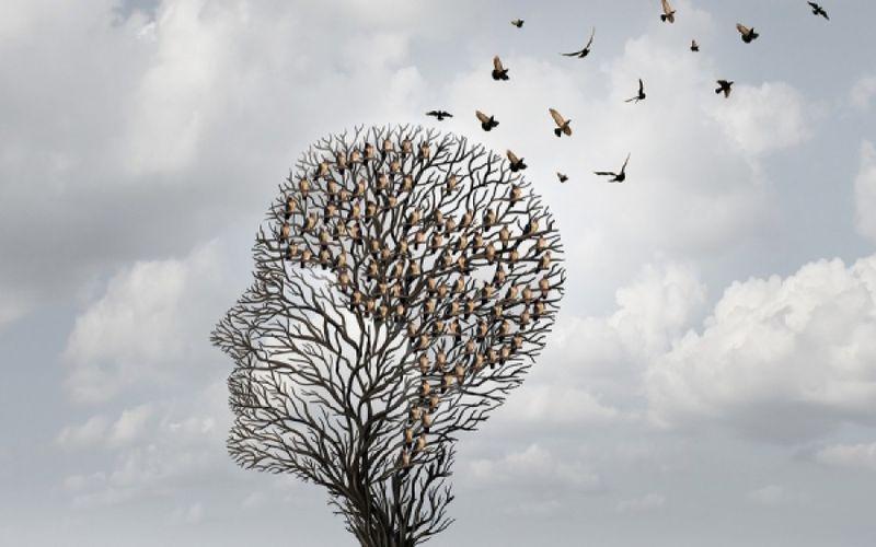 ανθρώπινο κεφάλι από κλαριά δέντρου που πάνω κάθονται πουλιά και σιγά σιγά φεύγουν