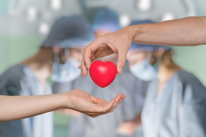 Δύο χέρια που δίνει ο ένας στον άλλον μια καρδιά