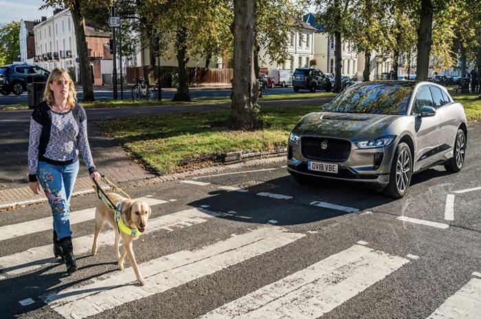 Τυφλή γυναίκα με σκύλο οδηγό περνάει διάβαση πεζών