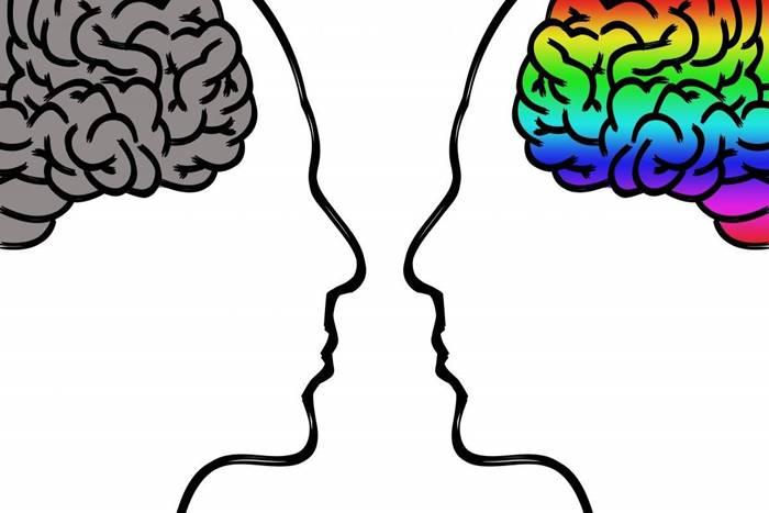 δύο σκίτσα εγκεφάλου