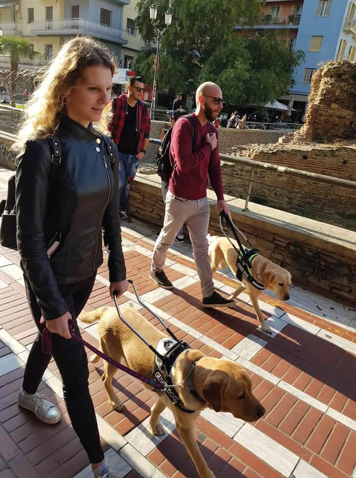 Σκύλοι οδηγοί με αναδόχους