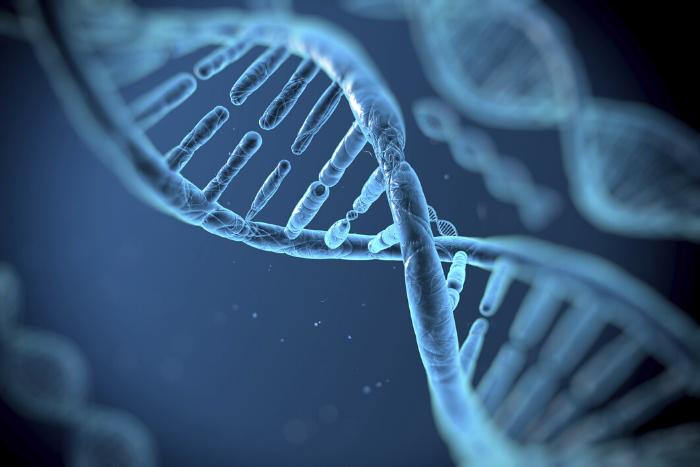 Γονιδίωμα