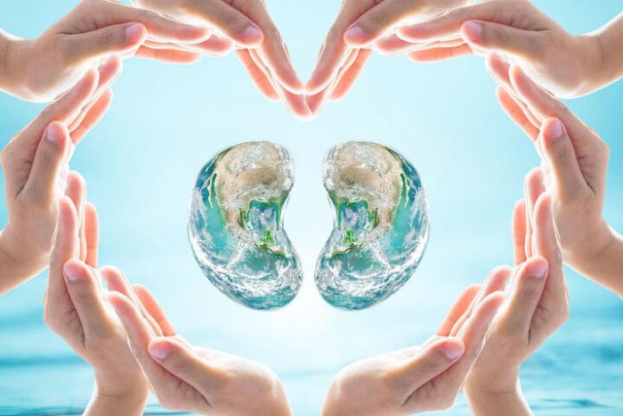 δύο νεφροί κλεισμένοι σε μια καρδιά σχηματισμένη από χέρια