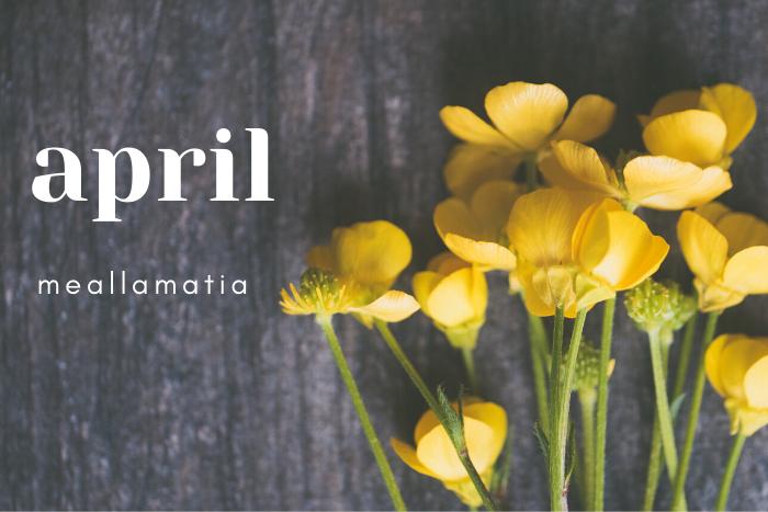 april meallamatia και λουλούδια