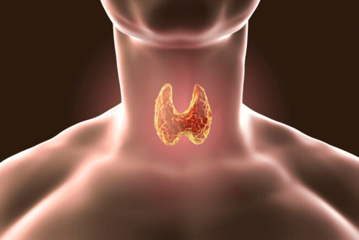 λαιμός με σημείο θυρεοειδή