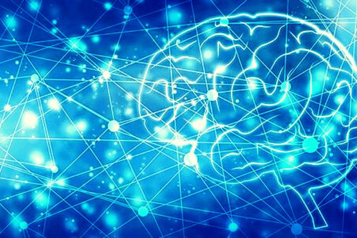 εγκέφαλος σε ψηφιακή μορφή