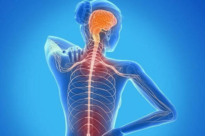 ανθρώπινος σκελετός μέσα από υπολογιστή