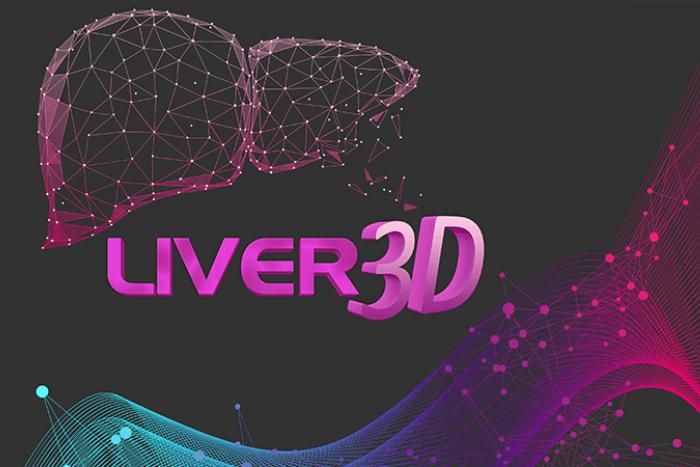λογότυπο 3d liver ερευνητικό πρόγραμμα