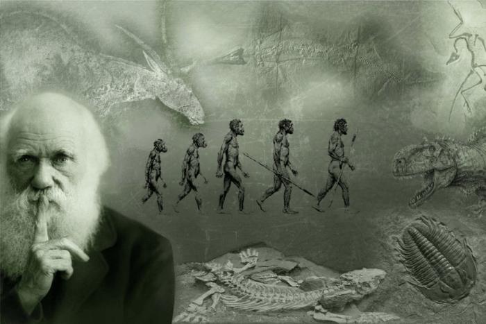Ο Δαρβίνος και από πίσω του η εξέλιξη του ανθρώπου