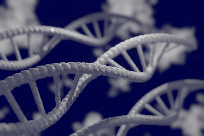 Απεικόνιση γονιδίων