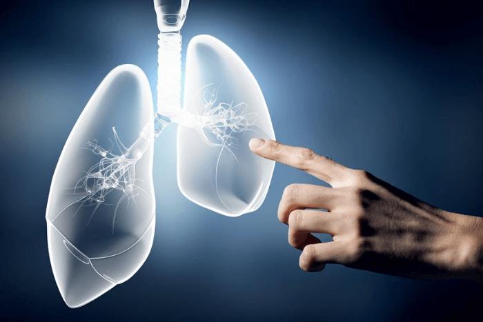 Δύο πνευμόνια μέσα από ψηφιακό μηχάνημα και ένα χέρι που δείχνει το εσωτερικό τους