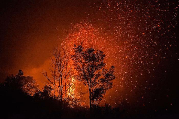 Δάσος που καίγεται