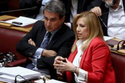 Η Φώφη Γεννηματά και ο Ανδρέας Λοβέρδος σε έδρανα στη βουλή μιλάνε
